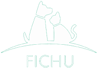 Fichu