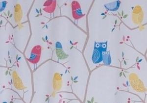Draperie Owl