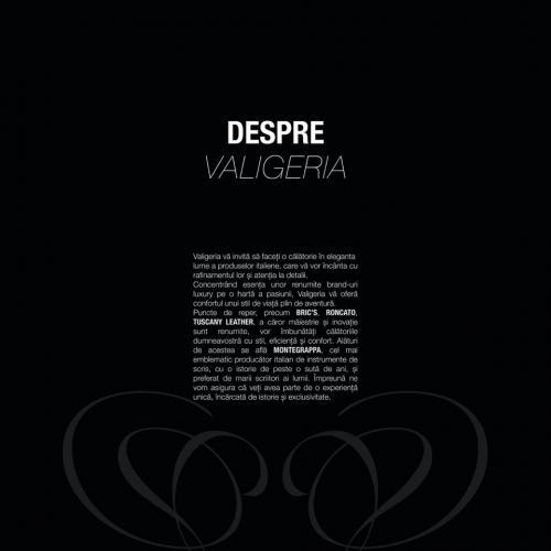 REVISTA VALIGERIA & LEXUS RX & MONTEGRAPPA 12