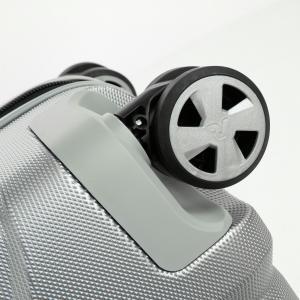 Troller cabina Unica Roncato6