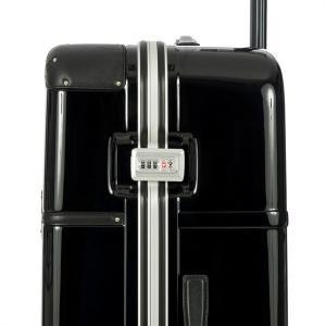 Troller XL Bellagio Metallo5