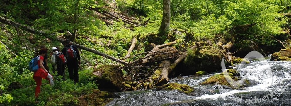 Boga - Munții Bihor