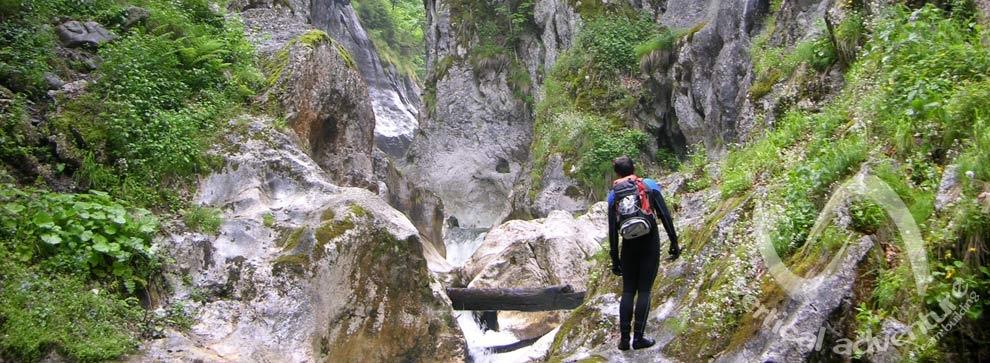 Cheile Buții - Munții Retezat