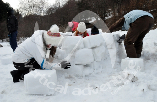 Activitati de iarna 12