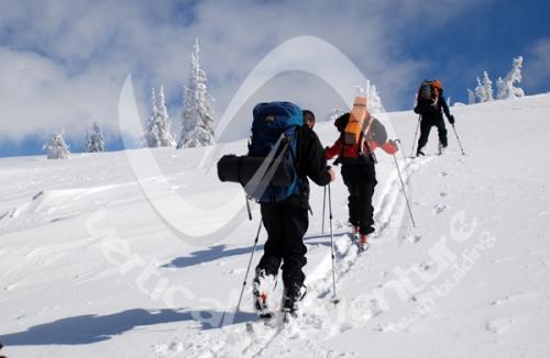 Activitati de iarna 15