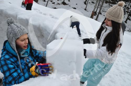 Activitati de iarna 9
