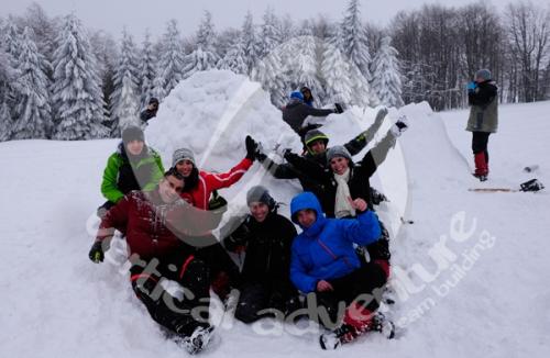 Activitati de iarna 13