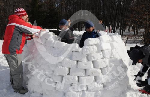 Activitati de iarna 5