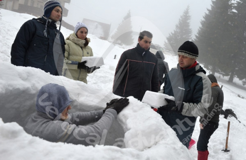 Activitati de iarna 7