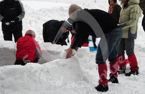 Activitati de iarna 6