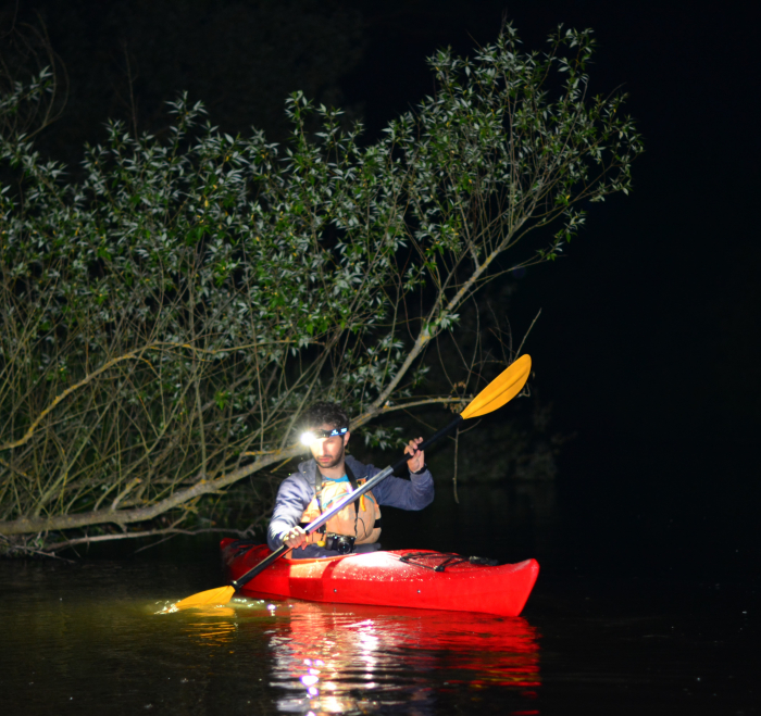 Full Moon Kayaking on Bega River [0]